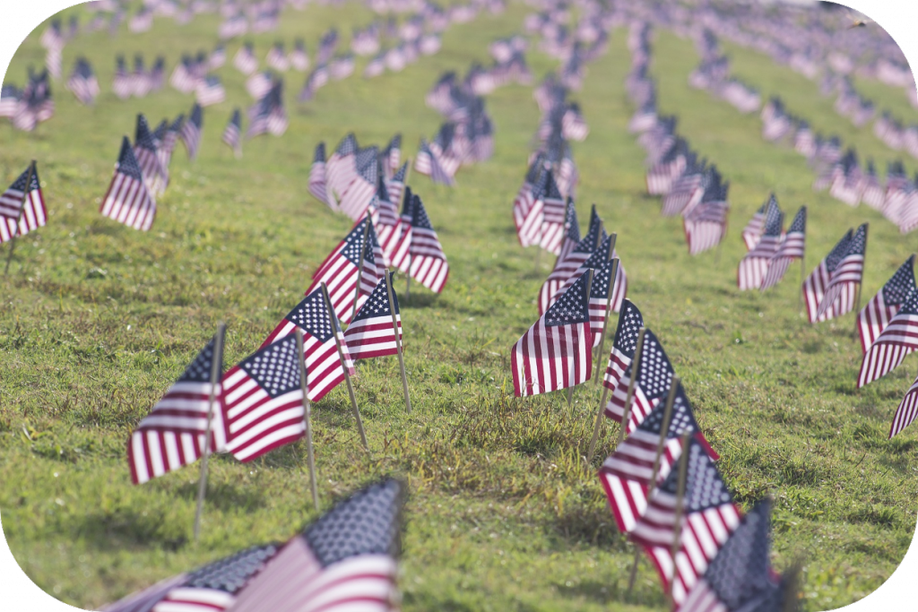 Field of miniature American flags