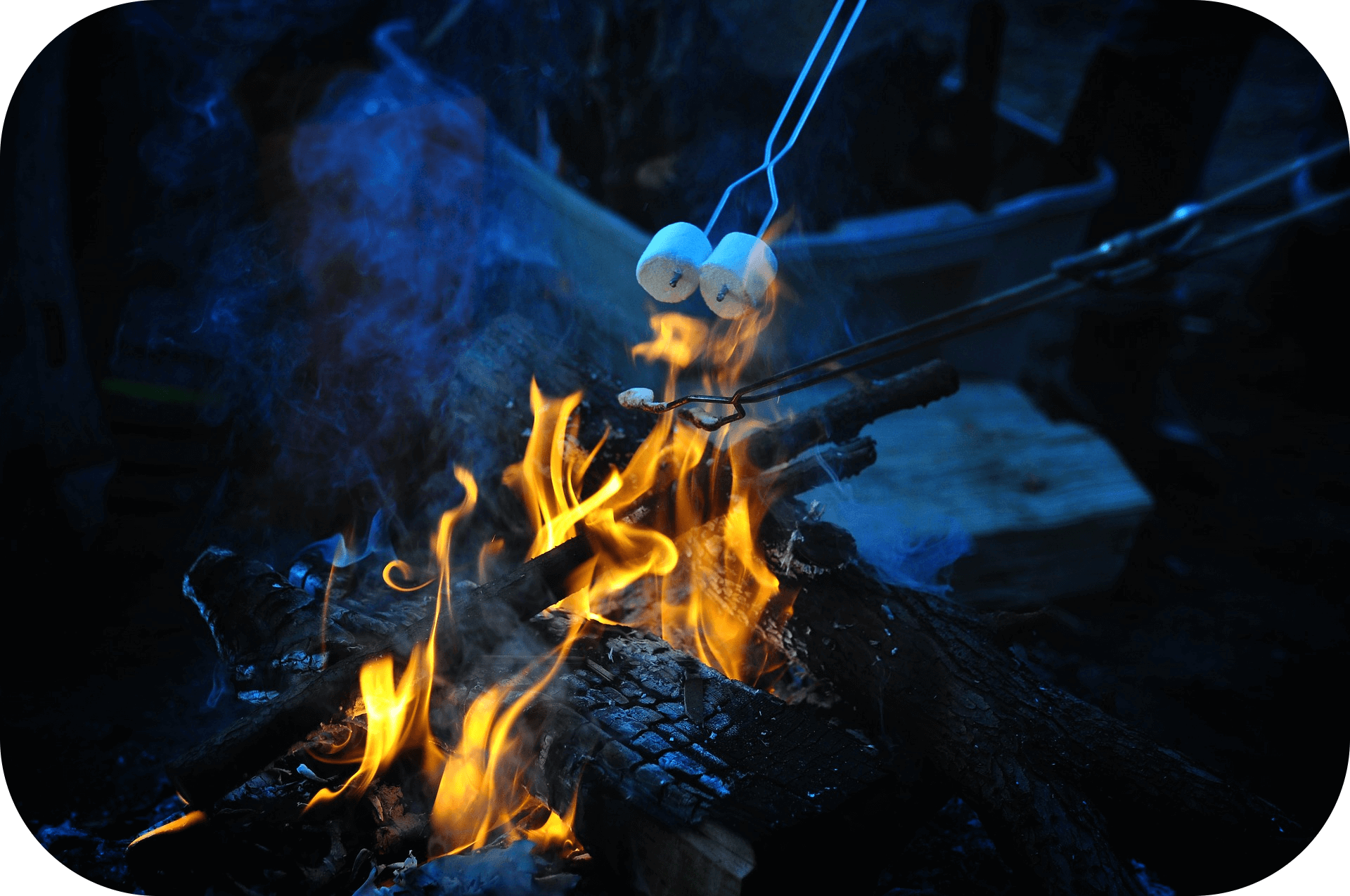 Convivial Campfire