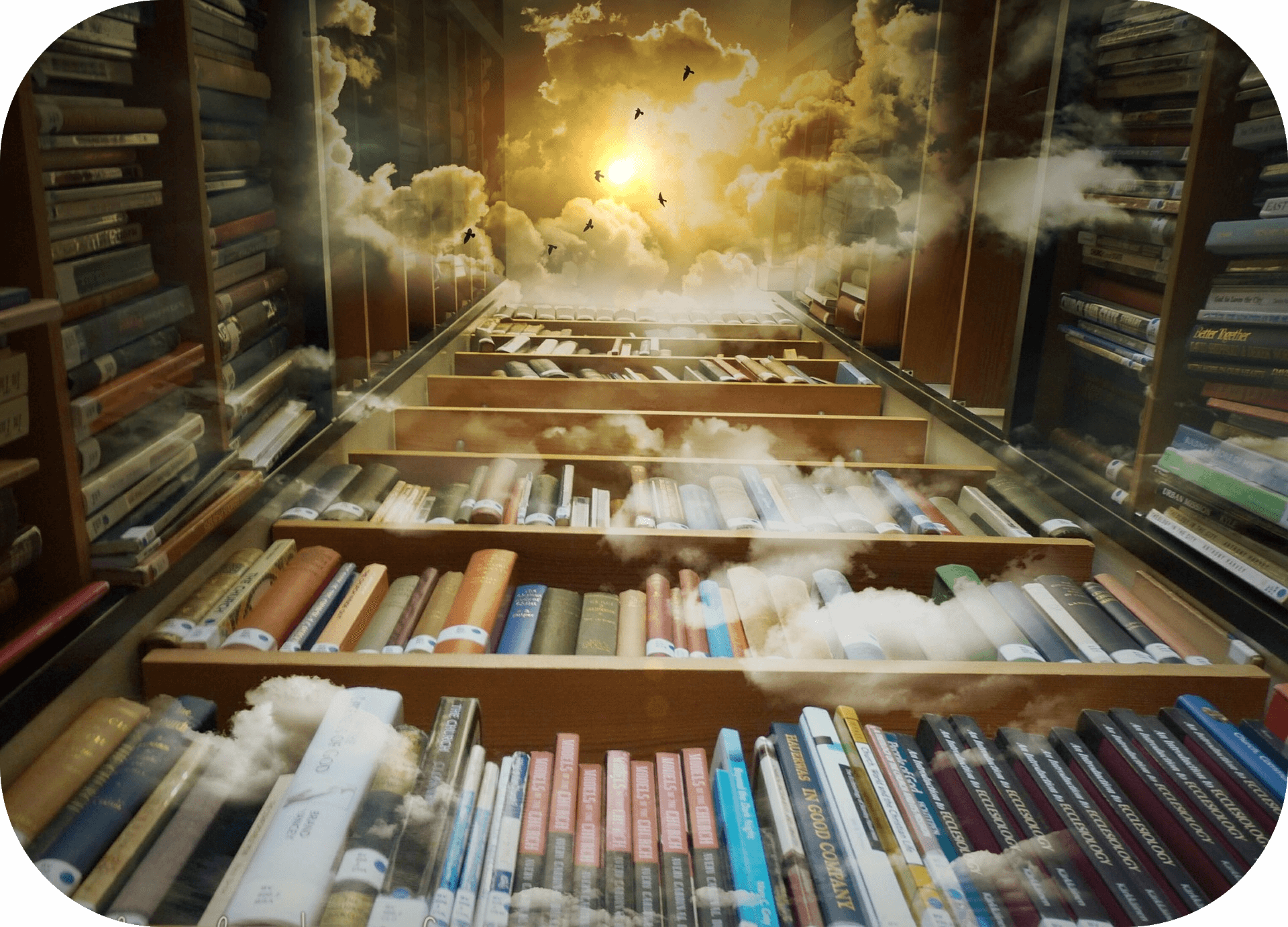 Tall bookshelves, clouds, birds, sky, sunlight