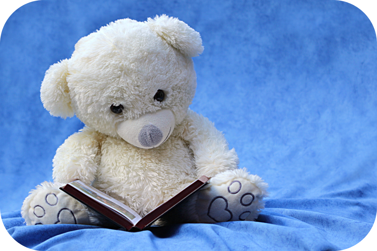 White teddy bear, book